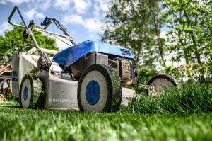 recogida y retirada de desechos de jardín